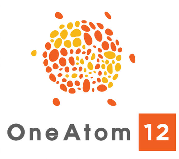 OneAtom 12 Ltd